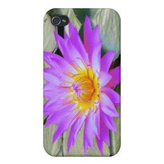Caja púrpura rosada de la mota de la flor de Lotus iPhone 4/4S Funda