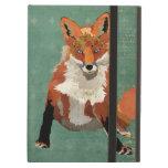 Caja retra ambarina del Fox