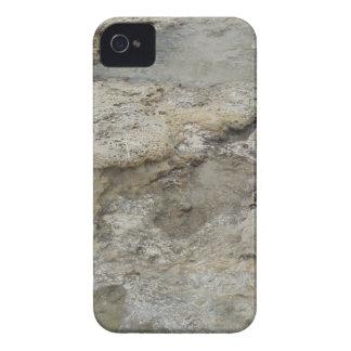 Caja rocosa de la orilla Case-Mate iPhone 4 protectores