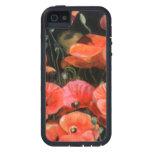 Caja roja de Iphone de las amapolas de maíz iPhone 5 Cárcasa