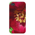 Caja roja de la flor iPhone4 iPhone 4 Carcasas