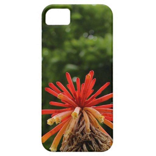 caja roja del iphone de la explosión de la flor iPhone 5 Case-Mate cobertura