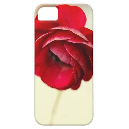 Caja roja del iPhone de la flor iPhone 5 Case-Mate Fundas