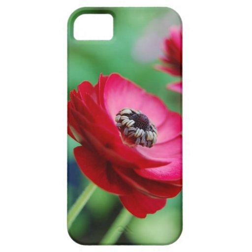 Caja roja del iPhone de la flor iPhone 5 Cárcasas