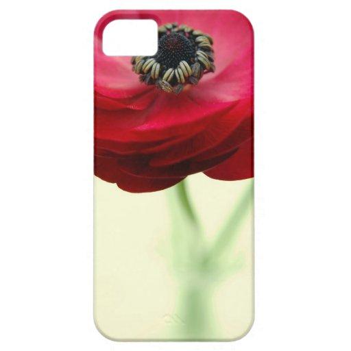 Caja roja del iPhone de la flor iPhone 5 Protectores