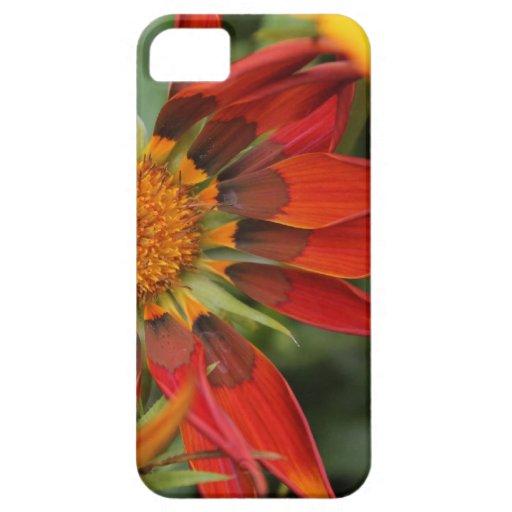 caja roja del iphone del petalsl de la flor iPhone 5 protector