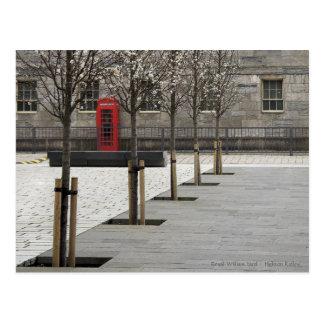 Caja roja del teléfono en la yarda real de postales
