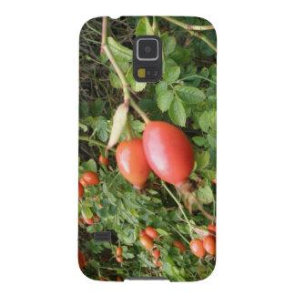 Caja roja jugosa de la galaxia de Samsung de los Funda Galaxy S5