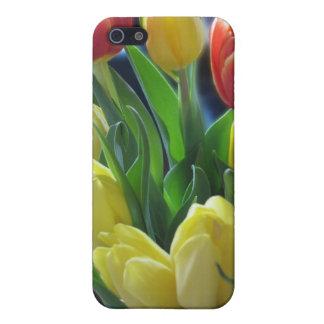 Caja roja y amarilla del iPhone de los tulipanes iPhone 5 Cobertura