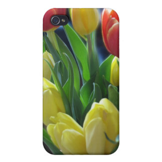 Caja roja y amarilla del iPhone de los tulipanes iPhone 4 Protectores