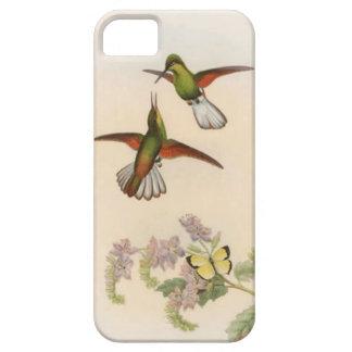 Caja roja y verde del iPhone 5 de los colibríes iPhone 5 Carcasas