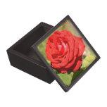 Caja romántica de la baratija del rosa rojo cajas de regalo de calidad