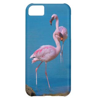 Caja rosada de la casamata del iPhone 5 del flamen