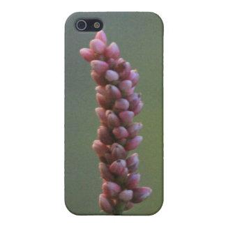 Caja rosada de la mota de Iphone 4/4s del Wildflow iPhone 5 Funda