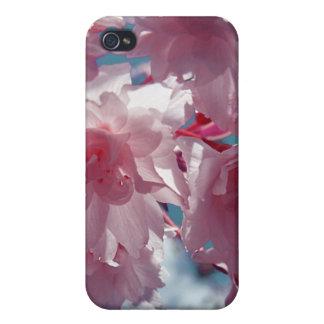 Caja rosada de la mota de las flores iPhone 4/4S carcasas