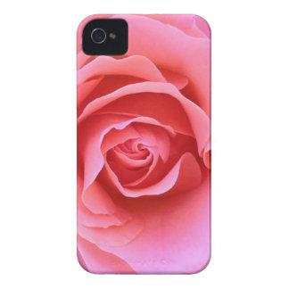 Caja rosada del iPhone del pétalo color de rosa iPhone 4 Coberturas