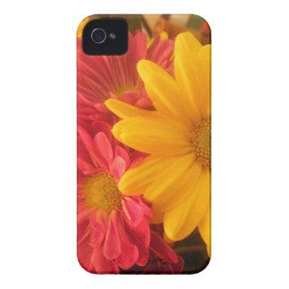 Caja rosada y amarilla del iPhone 4S de las iPhone 4 Fundas