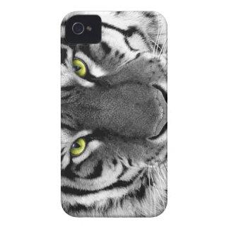 Caja salvaje blanco y negro del tigre iPhone 4 carcasa