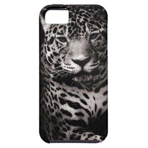 Caja salvaje de la casamata de Jaguar iPhone 5 Carcasas