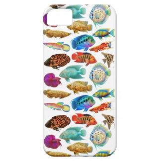 Caja tropical colorida del iPhone de los pescados  iPhone 5 Coberturas