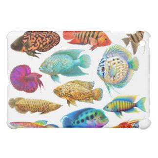 Caja tropical de la mota de los pescados del