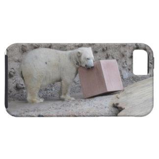 Caja universal del teléfono del oso polar iPhone 5 fundas