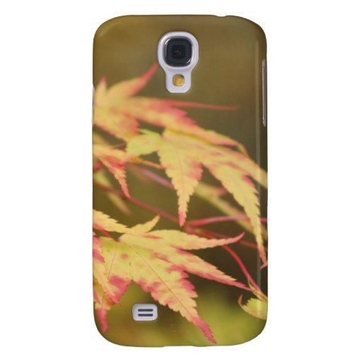 Caja verde de Acer IPhone