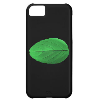 Caja verde de IPhone de la hoja