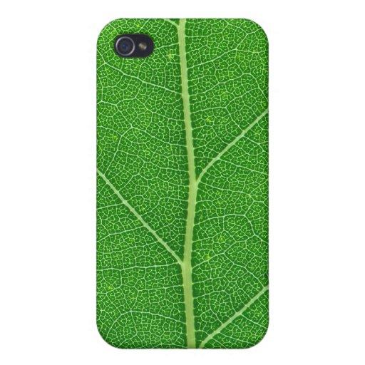 caja verde de la textura de la hoja del árbol de l iPhone 4 carcasa