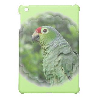 Caja verde del iPad del loro