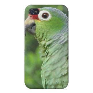 Caja verde del iPhone del loro iPhone 4 Coberturas