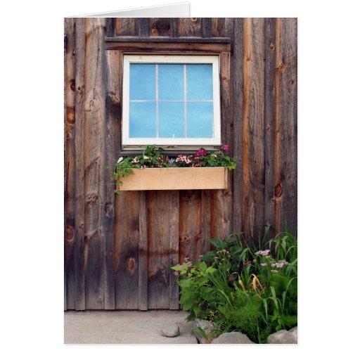 Caja y ventana de la flor felicitacion