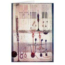 Cajal Greetings Card