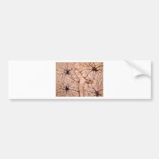 Cajal's Neurons 3 Bumper Sticker