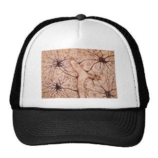 Cajal's Neurons 3 Trucker Hat