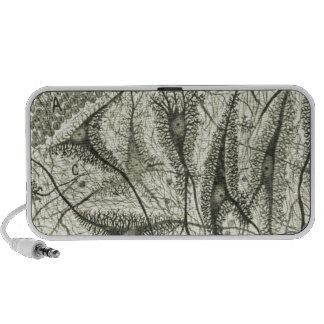 Cajal's Neurons 4 iPod Speaker