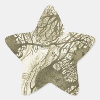 Cajal's neurons 6 star sticker