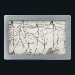 """Cajal's Neurons 8 Belt Buckle<br><div class=""""desc"""">cajal,  neuron,  neurones</div>"""