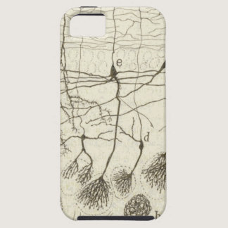 Cajal's Neurons 8 iPhone SE/5/5s Case