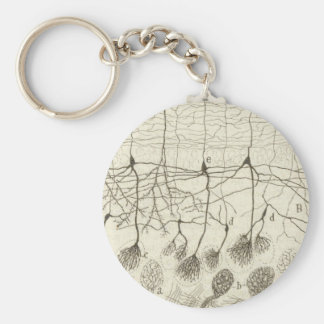 Cajal's Neurons 8 Keychain