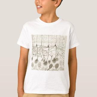 Cajal's Neurons 8 T-Shirt
