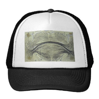 Cajal's spinal neurons - 5 trucker hat
