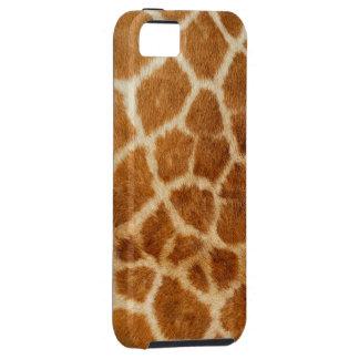Cajas de la mota de la jirafa 1 iPhone 5 funda