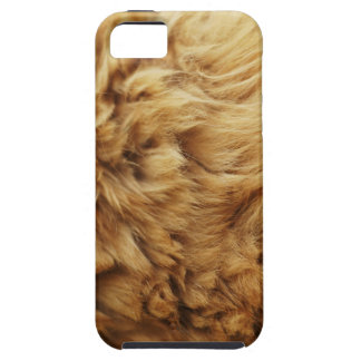 Cajas de la mota de la piel 1 funda para iPhone SE/5/5s