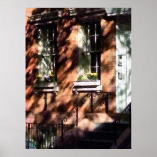 Cajas de ventana Greenwich Villag Póster