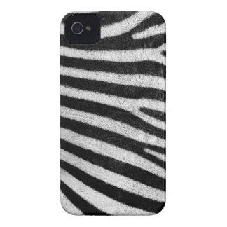 cajas intrépidas de la zarzamora de la cebra iPhone 4 Case-Mate protector