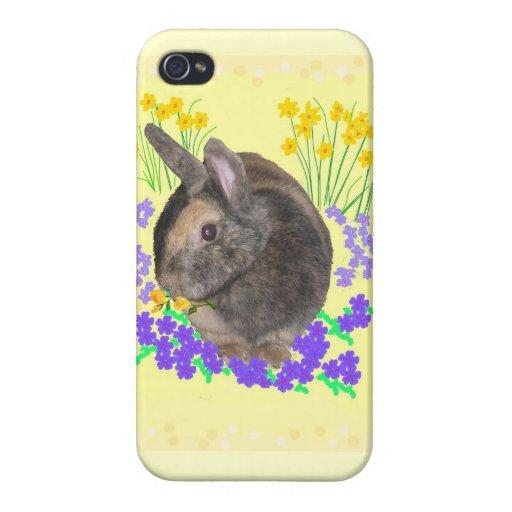 Cajas lindas de la foto iphone4 del conejo iPhone 4 protectores