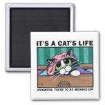 Cajones sucios v.01 - es imán de la vida de un gat