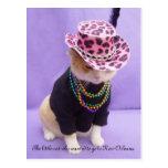 Cajun Bubba Kitty Post Card