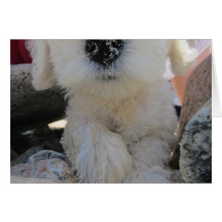 Cake I Smell Fun Custom Cute Goldendoodle pup Greeting Card
